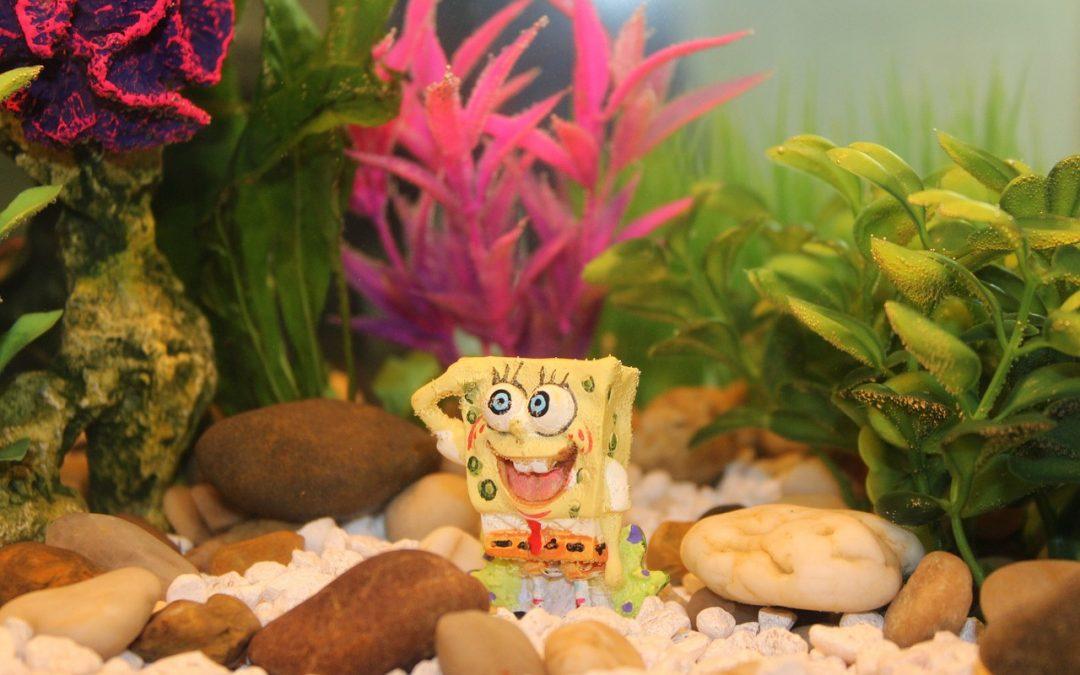 Spongebob huis
